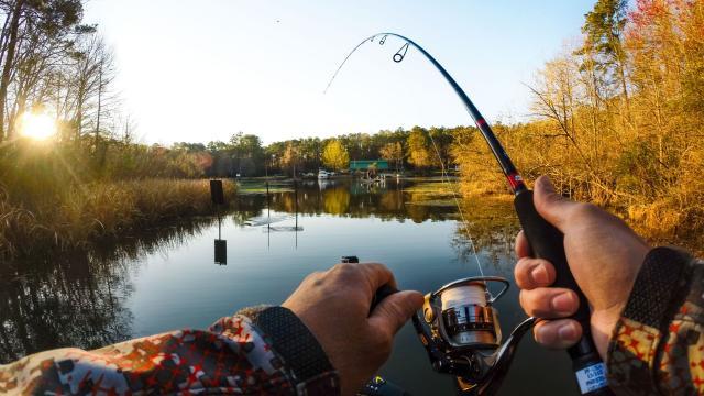 Скачать Игру Рыбалка На Русском Языке - фото 2